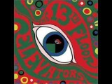 Roller Coaster - 13th Floor Elevators
