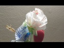Fiori con i pirottini di carta - riciclo/Flowers with paper cups - recycling