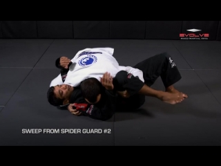 BJJ- 5 Essential Spider Guard Sweeps - Evolve University