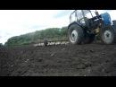 Добиваем сорняк Бороним посевы подсолнечника на тракторе ЮМЗ 6КЛ