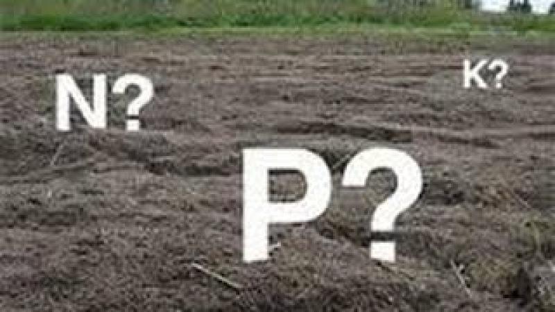 Fertilización del Suelo para Agricultura - Abono Orgánico o Químico - TvAgro por Juan Gonzalo Angel