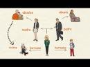 Aprender español: La familia (nivel intermedio)