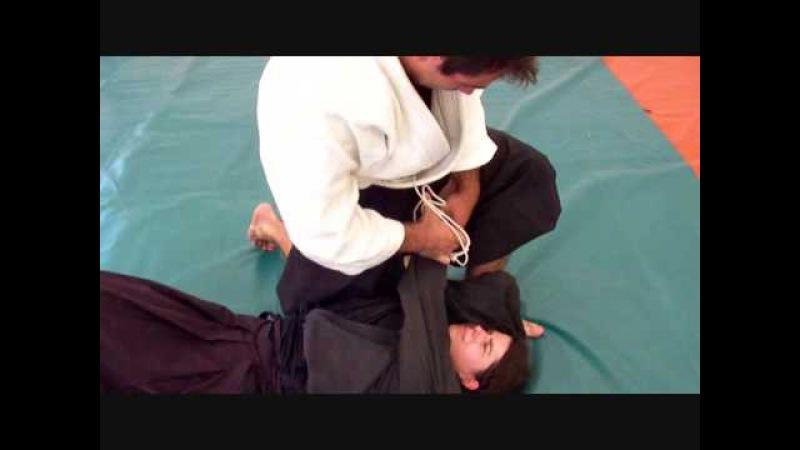 Ogawa Ryu JUJUTSU TORITE HACHIHON ME - SEITEIGATA