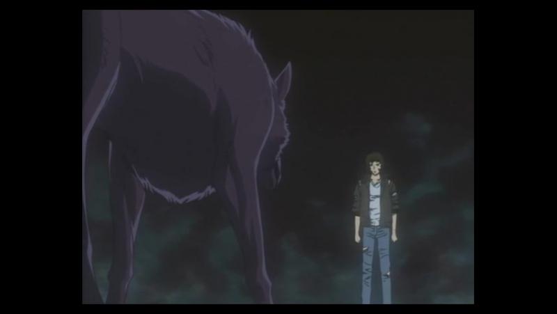 Аниме Волчий дождь 26 серия Wolfs Rain