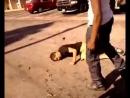 Боксер побил борца