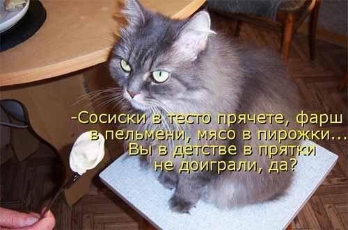http://cs630530.vk.me/v630530601/1fcb5/Xte8AkofqMU.jpg
