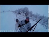 Охота на зайца зимой, тропление 3