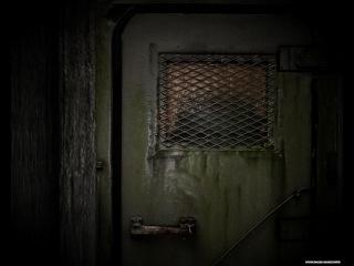 SCP-087: Дневник доктора удалено (Часть 2)