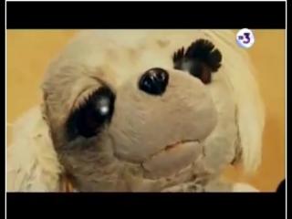 Тайные знаки с Олегом Девотченко - Кукла смерти или не детские игрушки. от 28.01.2016