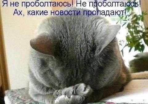 Информатор сепаратистов задержан на Луганщине - Цензор.НЕТ 6699