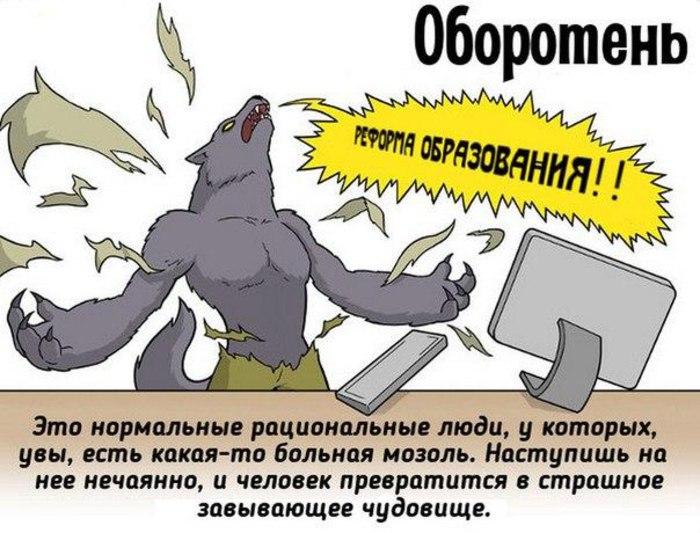 https://pp.vk.me/c630531/v630531431/24a56/DOkvCpg3Cr8.jpg