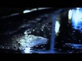 D.I.P Project feat Selecta - Я Люблю.(SR-F Video)