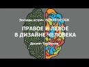 Правое и левое в Дизайне человека. Human Design