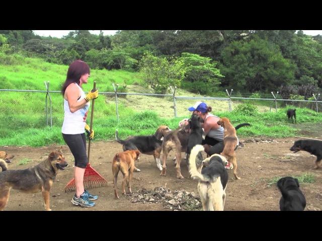 Voluntarios 23-08-2014 Territorio de Zaguates