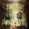 05.02 - NARADA | MONASTERY DEAD | BURTUL -Улитка