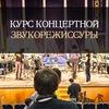 """Курс концертной звукорежиссуры """"ЖИВОЙ ЗВУК"""""""