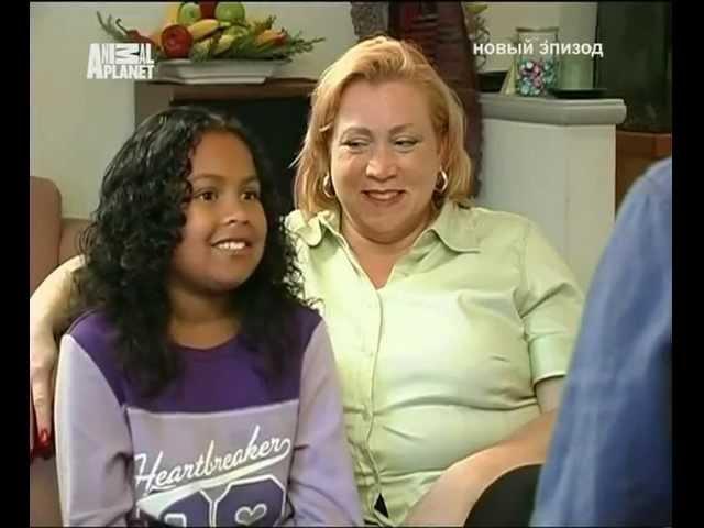 Переводчик с собачьего (сезон 1 серия 08 из 26 2004)