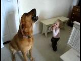 собака поет а девочка играет на губной гармошке)