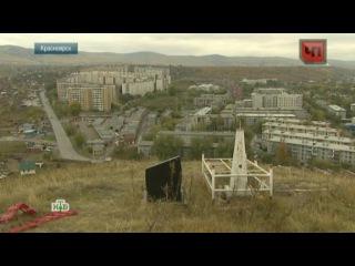 Жители Красноярска превратили город в кладбище домашних животных