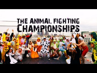 Animal Fighting Championships: THE UNDERDOG by Wallpaper. Slow Motion Music Video