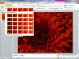Microsoft® Office PowerPoint® 2010 - Рисунок