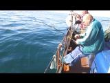 Лучше рыбалки не бывает!