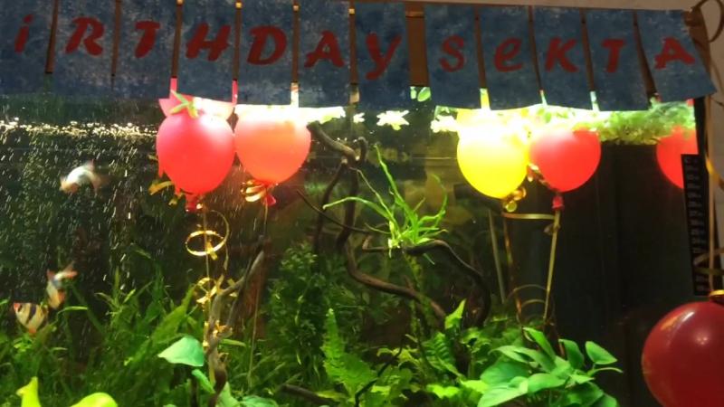 Happy Birsday Sekta