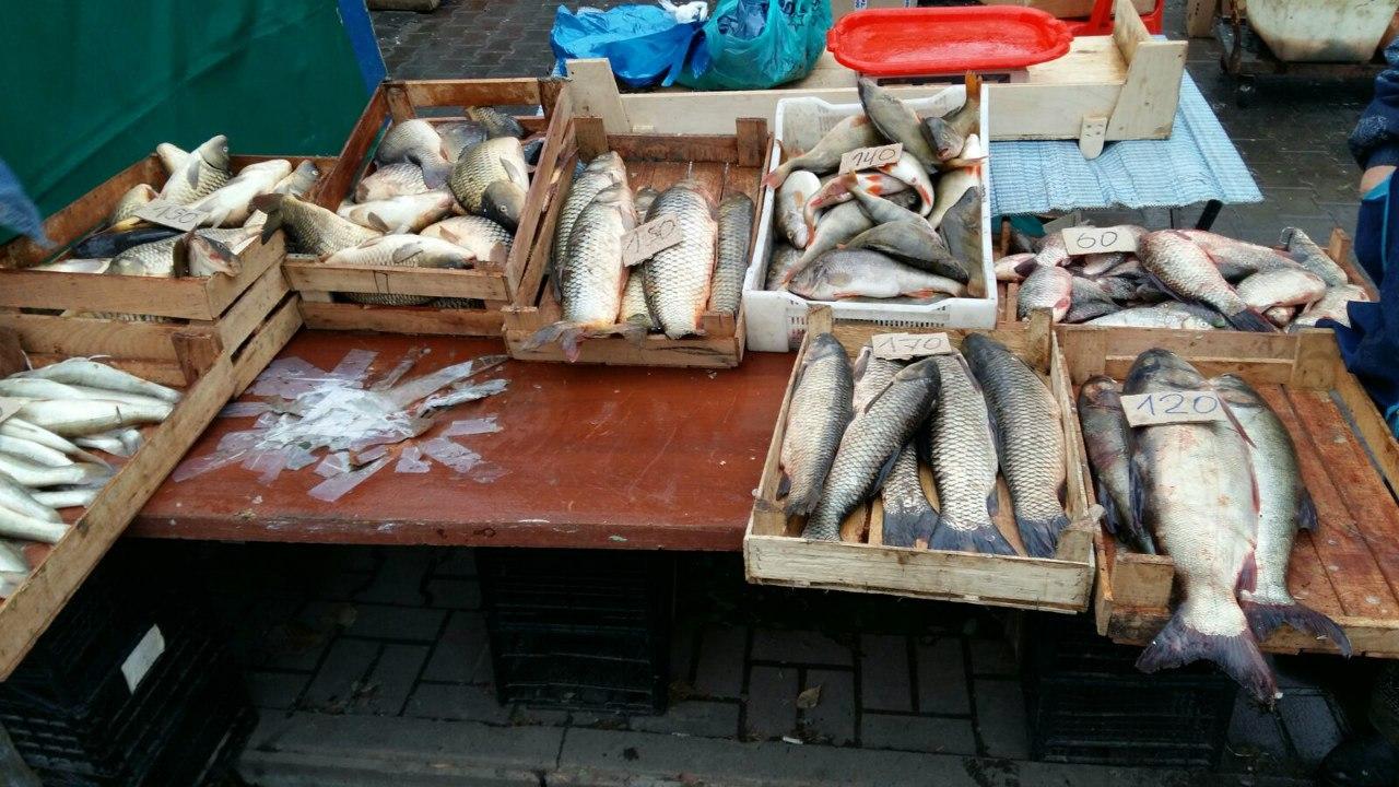 Уроженец Азербайджана реализовывал ростовчанам рыбу без документов из заброшенной газели