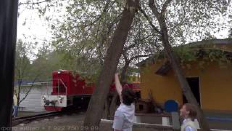белка дети видеограф Челябинск 79227108806