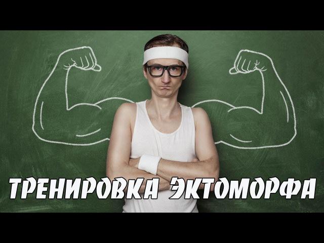 Как набрать массу худому. Программа тренировок для эктоморфа.