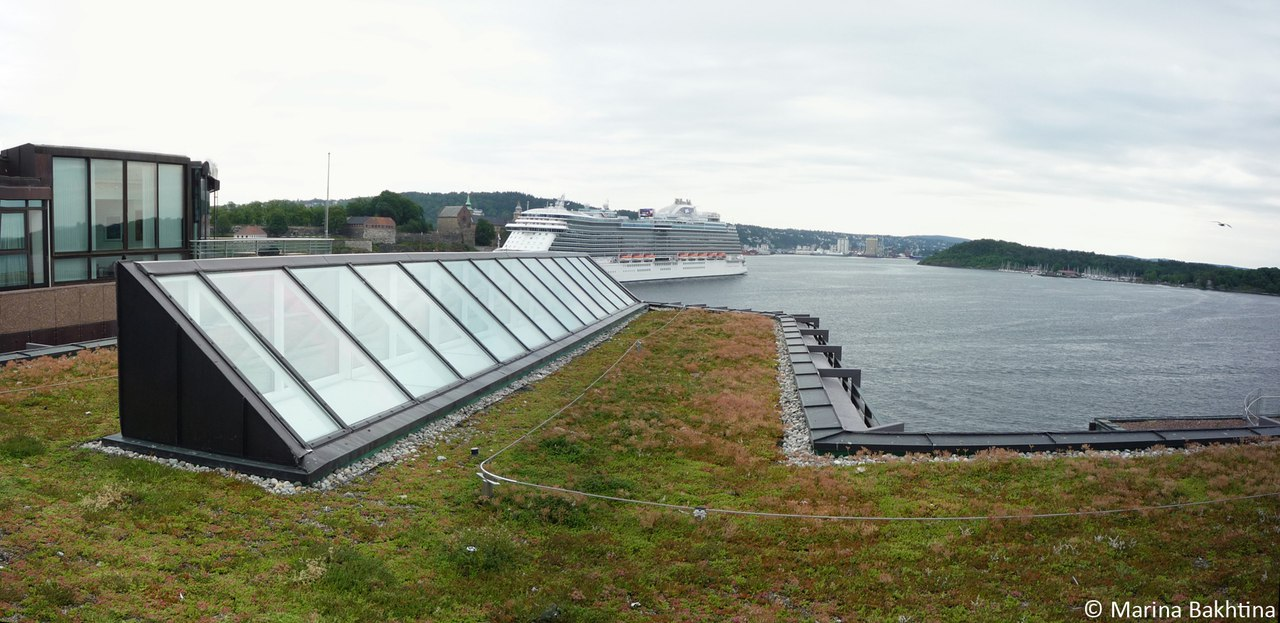 14 Green roof in Oslo / Aker Brygge
