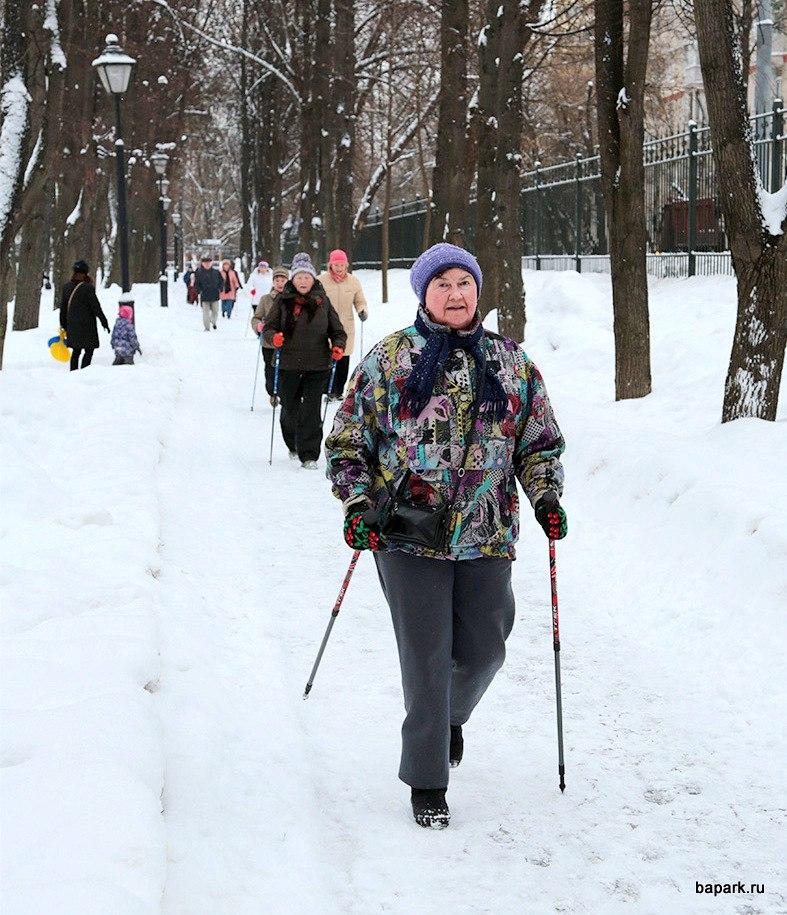 Соревнования по скандинавской ходьбе пройдут в парке «Бабушкинский»