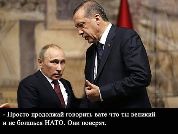 Противостояние Турции с Россией неизбежно, - аналитики Stratfor прогнозируют тревожный 2016 год - Цензор.НЕТ 1814