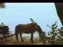 «Долгий путь в лабиринте» (1981) 2-я серия