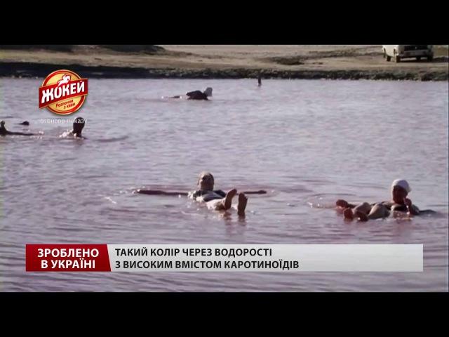 Зроблено в Україні. Україна вражає: казкові озера на Одещині з незвичайним кольором