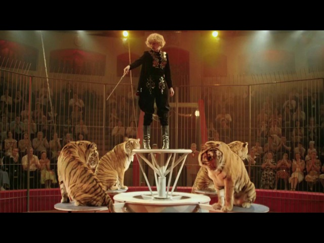 Премьера на Первом: сериал «Маргарита Назарова» — блеск, слава и страх королевы цирка