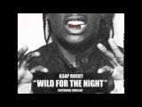 ASAP Rocky - Wild For The Night (Feat. Skrillex &amp Birdy Nam Nam) (LRYICS)