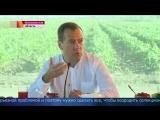 Первые итоги сельскохозяйственного сезона обсудил Дмитрий Медведев сфермерами Астраханской области.