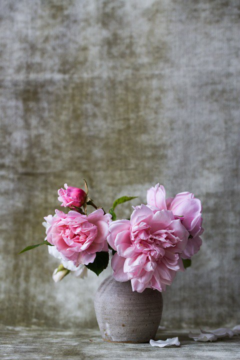 18 свежих букетов: скачать бесплатно