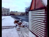 свалка на пл. революции г. Вологда + не чищенные велодорожки