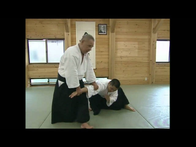 Atemi and Pressure Points in Aikido