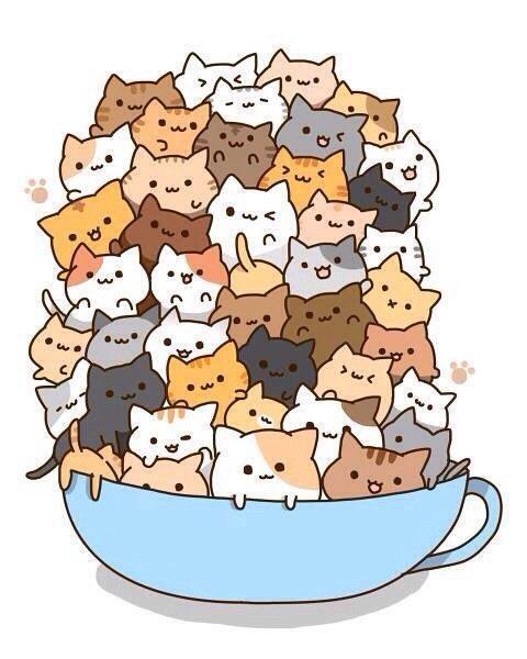 Блог о котиках :)