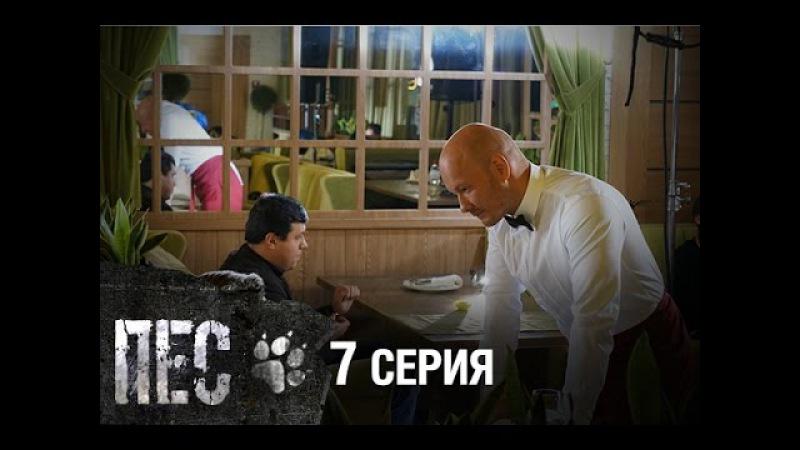 Сериал Пес - 7 серия