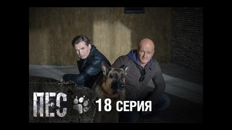Сериал Пес - 18 серия
