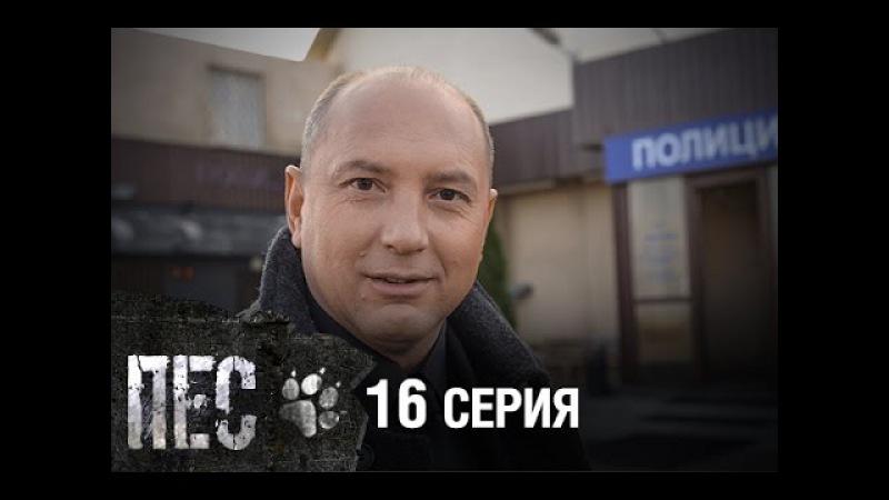 Сериал Пес - 16 серия