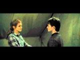 Harry &amp Hermione -