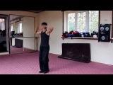 Ушу - 32 формы Чанцуань (урок)