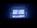 Like The Wind 2013 Treasure Box Tour Live In Budokan T ara QBS Video Clip MV chất lượng cao Đ