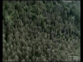 Беар Гриллс: По стопам выживших (1 сезон:5 серия)
