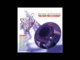Wayne Bergeron Big Band - Laura